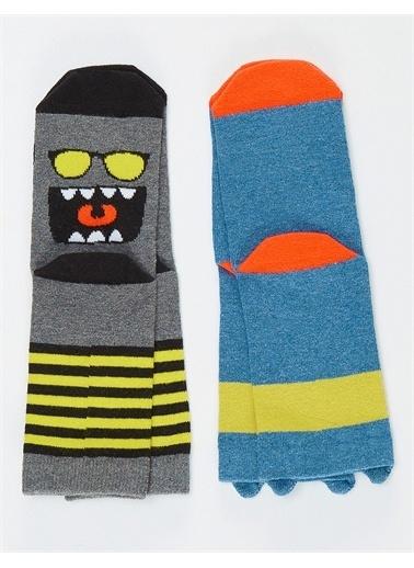 Denokids Hi&Duty Erkek Soket Çorap 2'li Renkli